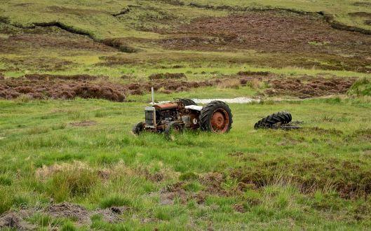 tractorold