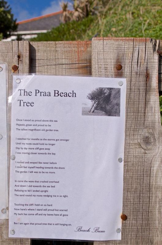 beachtreepoem